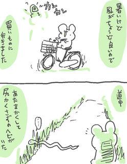 kam_r1343.jpg