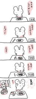 kam_r1346.jpg
