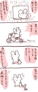 kam_r1351.jpg