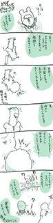 kam_r1354.jpg