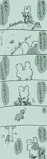 kam_r1386.jpg