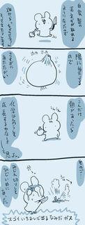 kam_r1395.jpg