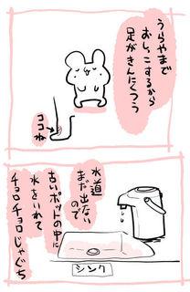 kam_r1536.jpg